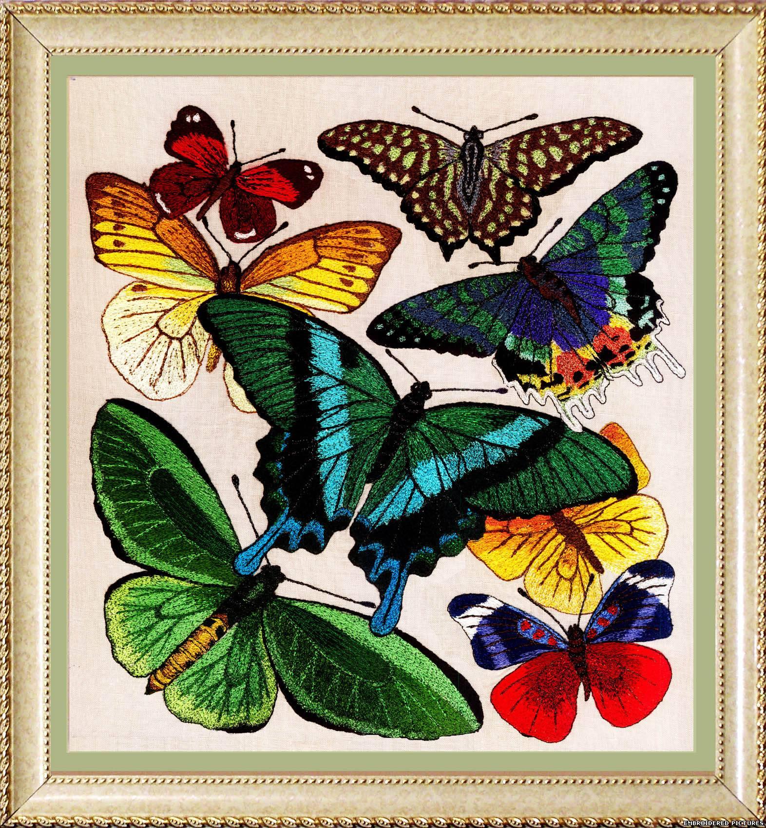 Бабочки для вышивки гладью картинки 90